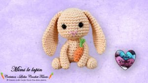 Patron de Crochet pour Poupée Amigurumi du Printemps on Apple Books | 169x300
